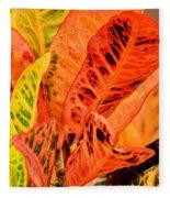 Croton's Many Colors Fleece Blanket