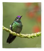 Crowned Hummingbird Fleece Blanket