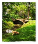 Cruz At Deer Creek Bridge Dwight Il Fleece Blanket