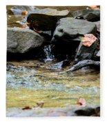 Crystal Clear Waters Of Hurricane Branch Fleece Blanket