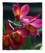 Ctna New River Orchid Fleece Blanket