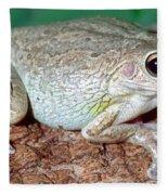 Cuban Tree Frog Osteopilus Fleece Blanket