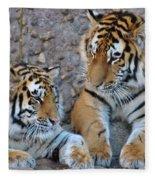 Cubs Fleece Blanket