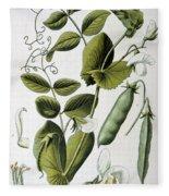 Culinary Pea Pisum Sativum Fleece Blanket