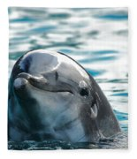 Curious Dolphin Fleece Blanket