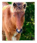 Curious Foal Fleece Blanket