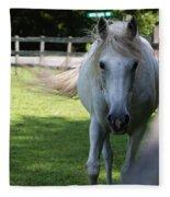 Curious Horse Fleece Blanket