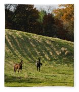 Curious Horses Fleece Blanket