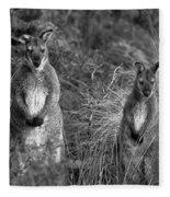 Curious Wallabies Fleece Blanket