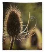 Curly And Spiky. Fleece Blanket