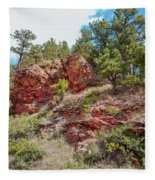 Custer State Park Ecology Fleece Blanket