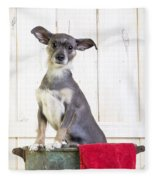Cute Dog Washtub Fleece Blanket