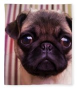 Cute Pug Puppy Fleece Blanket