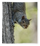 Cute Squirrel  Dare Me Fleece Blanket