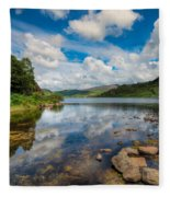 Cwellyn Lake Wales Fleece Blanket