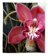 Cymbidium Flower Fleece Blanket
