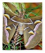 Cynthia Moth Fleece Blanket