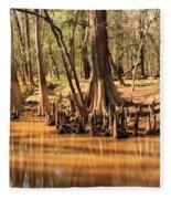 Cypress Arch Fleece Blanket