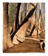 Cypress Hallway Fleece Blanket