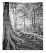 Cypress Roots In Big Cypress Fleece Blanket