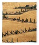 Cypress Tree Lined Road Fleece Blanket