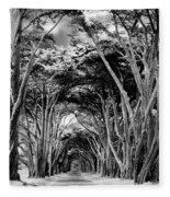 Cypress Tree Tunnel Point Reyes Fleece Blanket