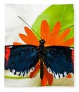 Cythera Butterfly Fleece Blanket
