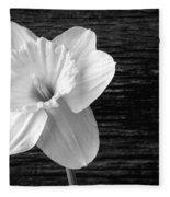 Daffodil Narcissus Flower Black And White Fleece Blanket
