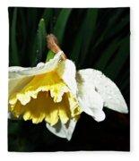 Daffodil In The Rain 2 Fleece Blanket