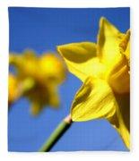 Daffodil Line Fleece Blanket