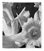 Daffodil Monochrome Study Fleece Blanket