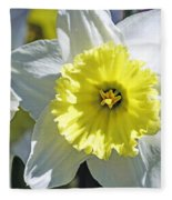 Daffodil Sunshine Fleece Blanket