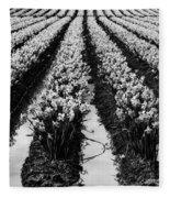 Daffodils Forever Fleece Blanket
