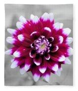 Dahlia Flower 2 Fleece Blanket