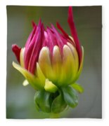 Dahlia Flower Bud Fleece Blanket