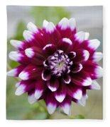 Dahlia Flower Fleece Blanket