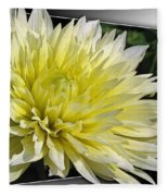 Dahlia Named Canary Fubuki Fleece Blanket