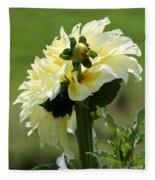 Dahlia Named Kelvin Floodlight Fleece Blanket