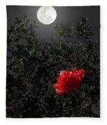 Daily Cycle 3 - Evening Fleece Blanket