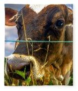 Dairy Cow Fleece Blanket