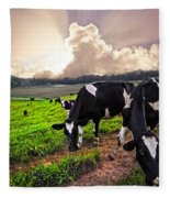 Dairy Cows At Sunset Fleece Blanket
