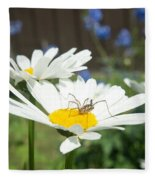 Daisies With Phalangiid Vistitor Fleece Blanket