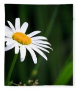 Daisy - Bellis Perennis Fleece Blanket