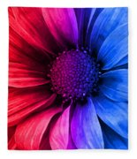 Daisy Daisy Red To Blue Fleece Blanket