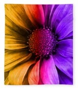 Daisy Daisy Yellow To Purple Fleece Blanket