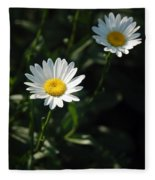Daisy Days Fleece Blanket