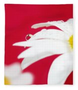 Daisy Reflecting On Red V2 Fleece Blanket