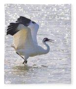 Dancing For My Lady Fleece Blanket