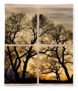 Dancing Forest Trees Picture Window Frame Photo Art View Fleece Blanket
