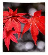 Dancing Japanese Maple Fleece Blanket